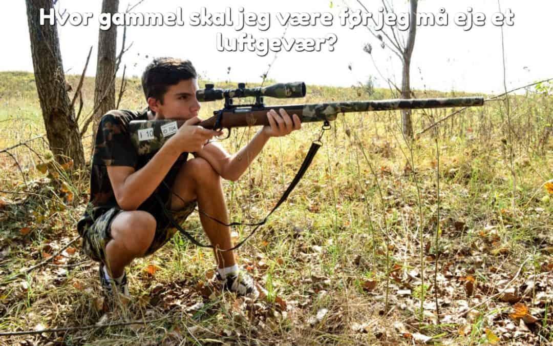 Hvor gammel skal jeg være før jeg må eje et luftgevær?